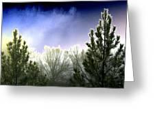 Foggy Moonlit Night Greeting Card