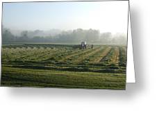 Foggy Morning Field Greeting Card