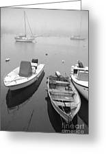 Foggy Morning In Cape Cod Black And White Greeting Card