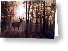 Foggy Morning In Missouri Greeting Card