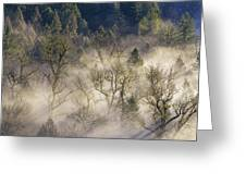 Foggy Morning In Sandy River Valley Greeting Card