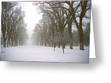 Foggy Morning Landscape 4 Greeting Card