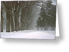Foggy Morning Landscape 6 Greeting Card