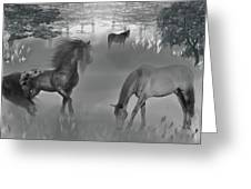 Foggy Morning Pasture Greeting Card
