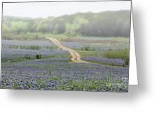 Foggy Muleshoe Bend Greeting Card