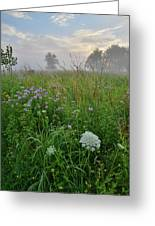 Foggy Prairie In Glacial Park In Mchenry County Greeting Card