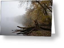 Foggy River Bank Greeting Card