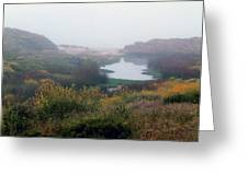 foggy springtime morning approach to Kehoe Beach Greeting Card