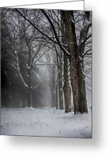 Foggy Vermont Winter Path Greeting Card