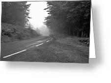 foggy way  BW Greeting Card