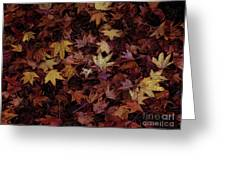 Foil Leaves Greeting Card