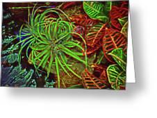 Foliage Abstract 3698 Greeting Card