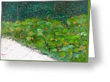 Foliage At Sanibel Greeting Card