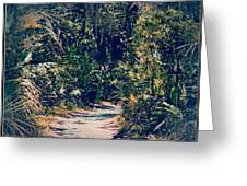 Foliage Pathway Greeting Card