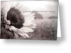 Follow The Sun Greeting Card