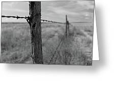 Follow The Wire Greeting Card