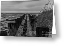 Folly Beach Anti Erosion Pier Greeting Card