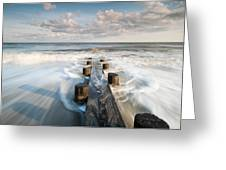 Folly Beach Charleston South Carolina Greeting Card