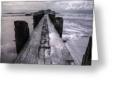 Folly Beach Pilings Charleston South Carolina Greeting Card