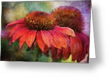 Fondness 2751 Idp_2 Greeting Card