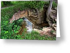 Fonferek Glen Rock Bridge And Falls Greeting Card