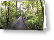 Foot Bridge In Costa Rica Greeting Card