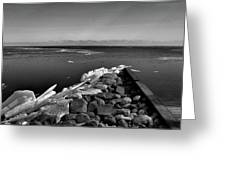 Foot Of 9th Line South Bw  Greeting Card