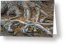 Foot Of The Tree Greeting Card