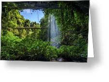 Footbridge And Crystal Falls  In The Rainforest Of Dorrigo In Australia Greeting Card
