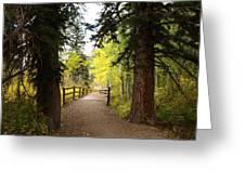 Footbridge In Aspen Colorado Greeting Card