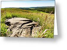 Foothills View Greeting Card