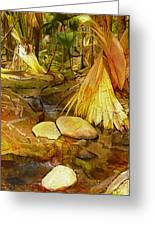 Footpath In National Park Greeting Card