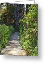 Footpath In Peters Canyon I Greeting Card