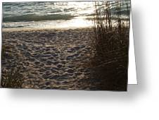 Footprints In The Dunes Greeting Card