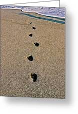 Footprints In The Sand ... Greeting Card