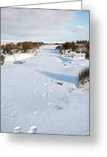 Footprints In The Snow V Greeting Card