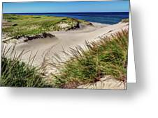 Footsteps In The Dunes Greeting Card