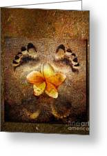 For The Love Of Me Greeting Card by Photodream Art