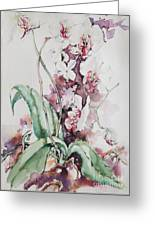 For The Love Of Orchids Greeting Card