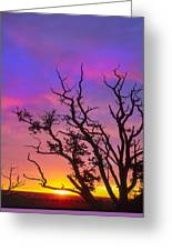 For The Love Of Sunrise  Greeting Card
