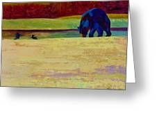 Foraging At Neets Bay - Black Bear Greeting Card