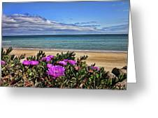 Foreshore Greeting Card
