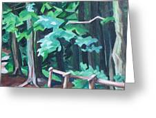 Forest 1 Greeting Card