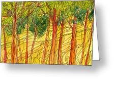 Forest #15 Greeting Card