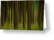 Forest Abstract01 Greeting Card