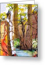 Forest And Stream Greeting Card