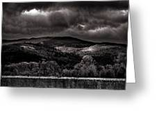 Forest Behind The Wall Greeting Card