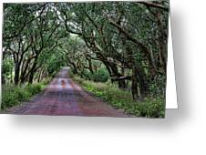 Forest Corridor Greeting Card