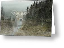 Forest Dweller Greeting Card