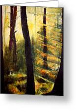 Forest Evening Greeting Card